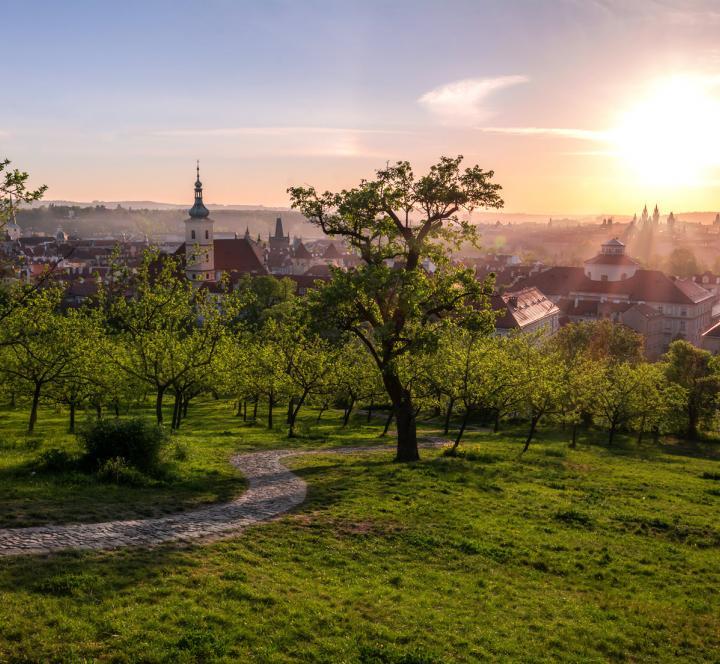 Prague in Springtime