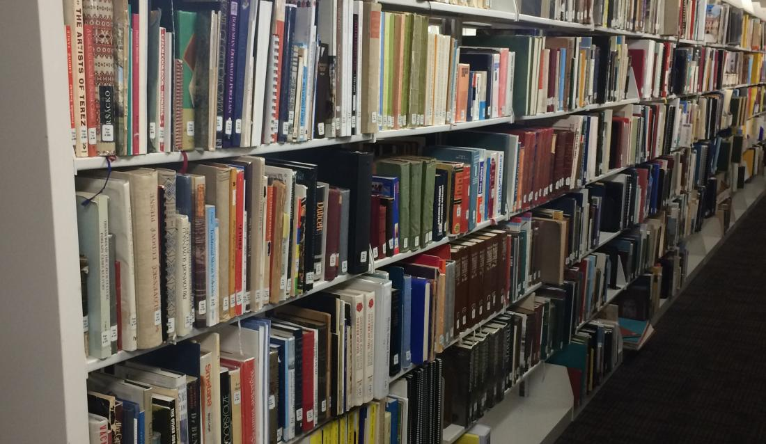 CGSI Library Shelves