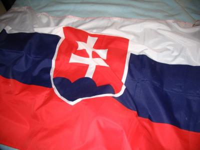 Slovak flag wavy