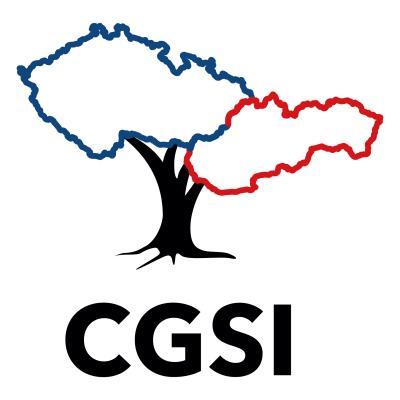 CGSI logo