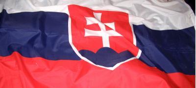 Slovak flag wavy